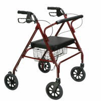 Image of Drive Go-Lite Bariatric Steel Rollator