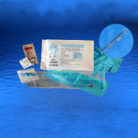 Image of Cure Medical Catheter Unisex Closed System Kit with Integrated 1500mL Collection Bag 16 Fr.